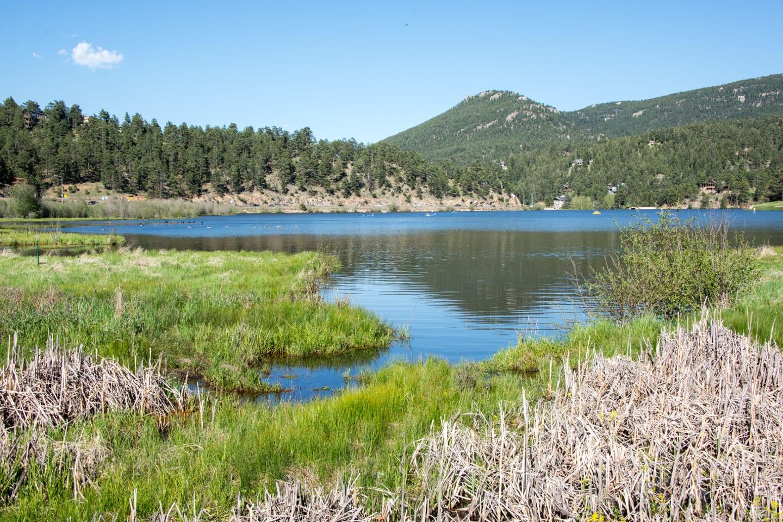 Evergreen Lake Marshlands Colorado