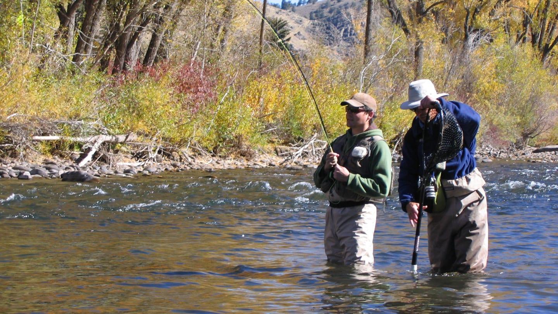 Fly Fishing Guide Gunnison River Colorado