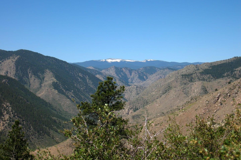Greyrock Meadows Trail Colorado