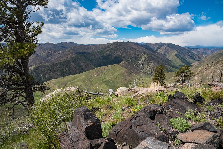 Greyrock Trail Laporte Colorado