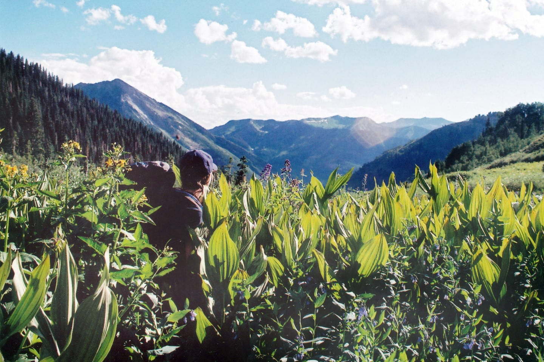 Maroon Bells-Snowmass Wilderness Colorado