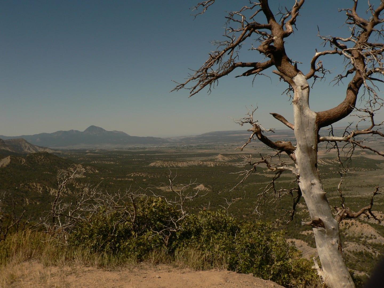 Mesa Verde Wilderness Colorado Overlook