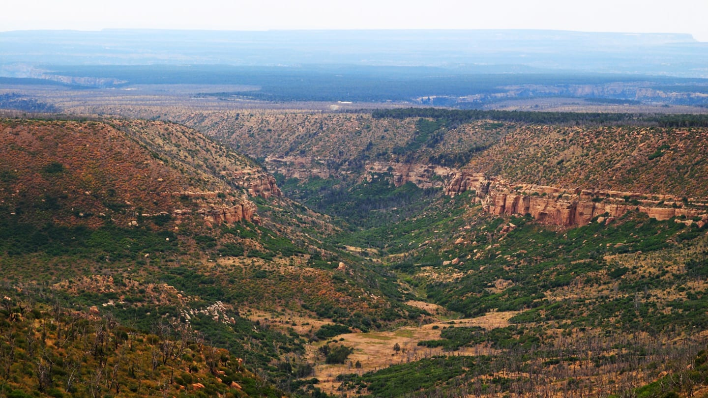Mesa Verde National Wilderness Area