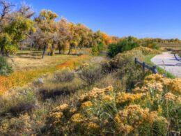 Poudre River National Recreation Trail Colorado