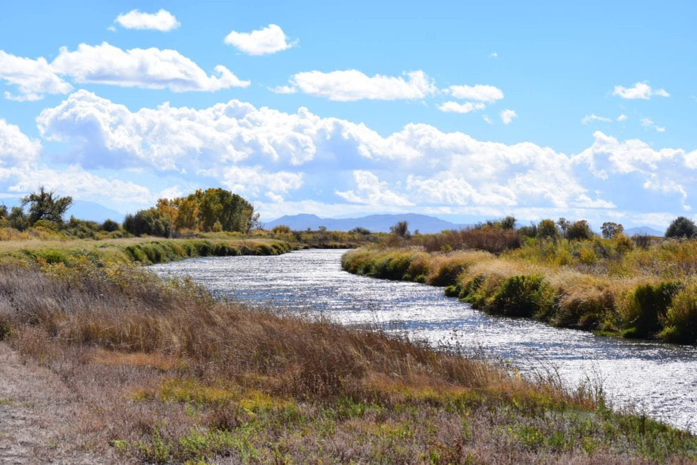 Rio Grande River Trail Alamosa Wildlife Refuge
