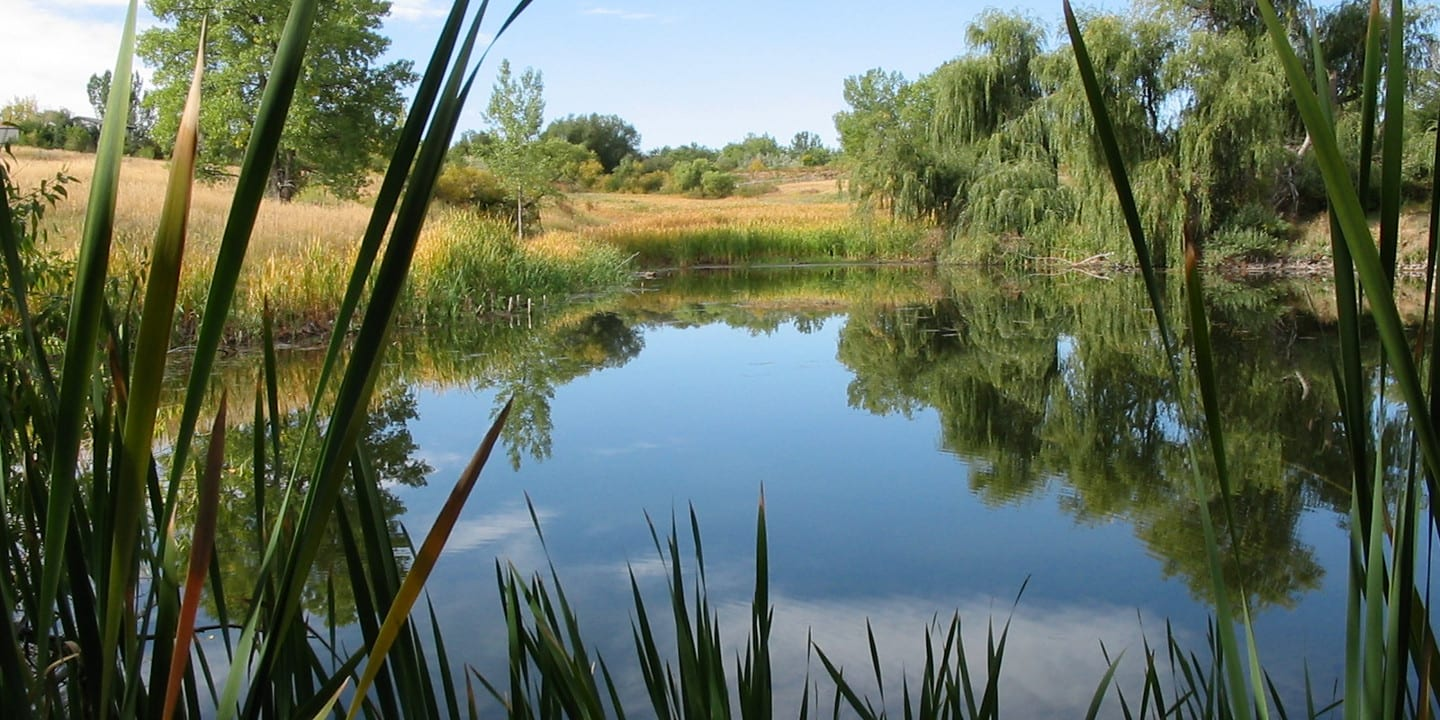 Two Ponds National Recreation Trail Arvada Colorado