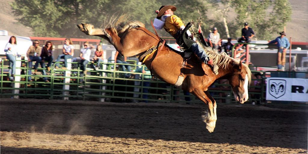 Cattlemen's Days Gunnison Colorado Rodeo