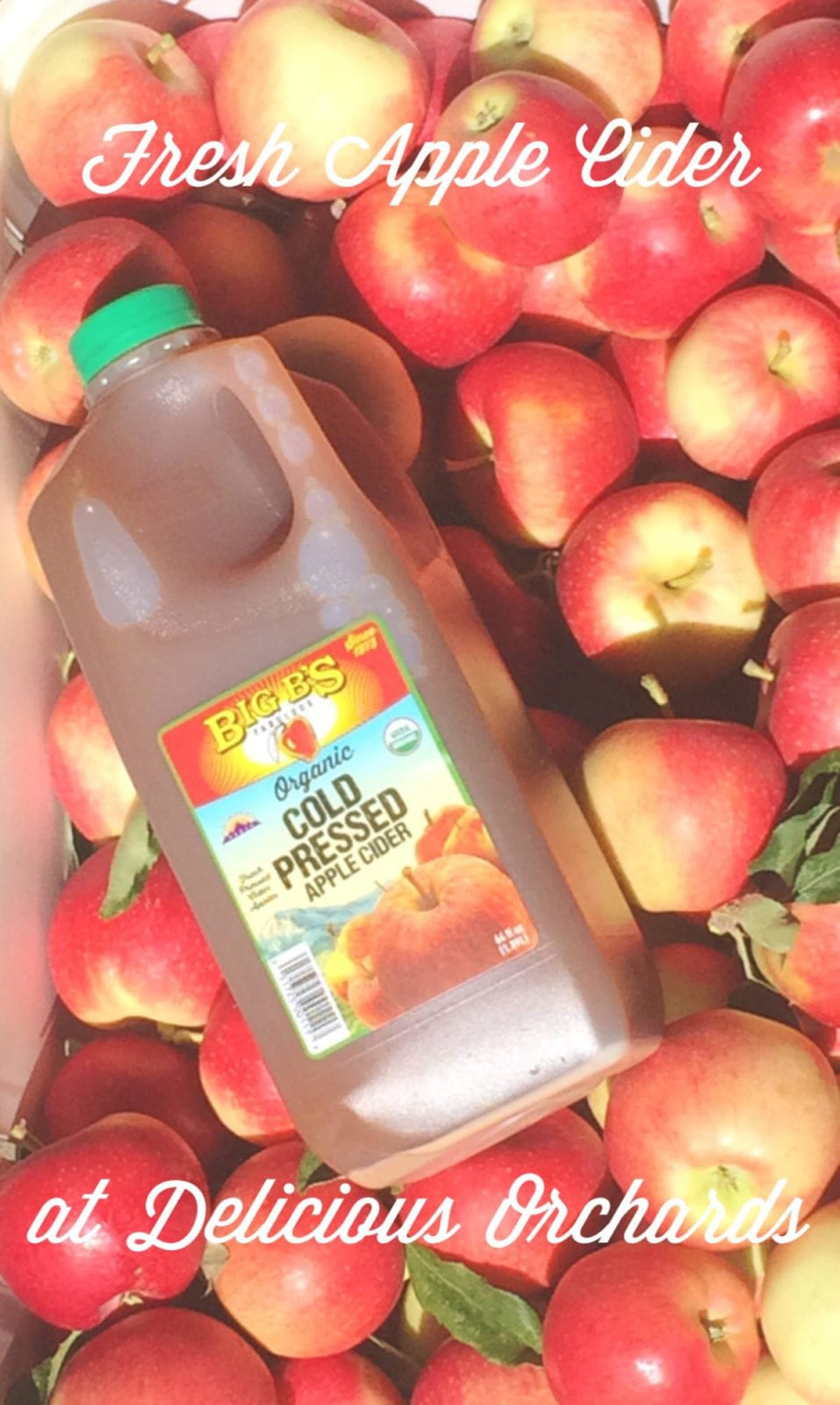 Big B's Juices Apple CIder