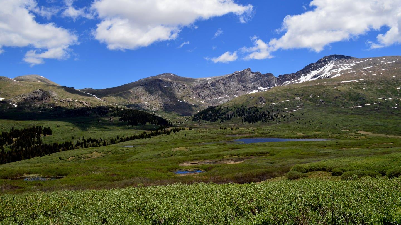 Gunung Bierstadt Georgetown Colorado Musim Panas