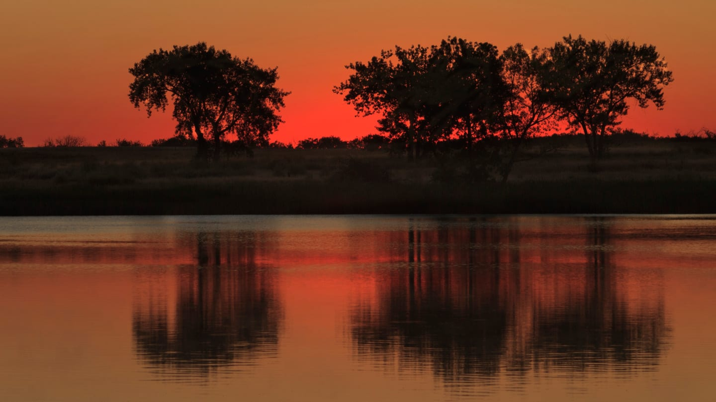 Lake Ladora Rocky Mountain Arsenal National Wildlife Refuge Trees Sunrise Denver