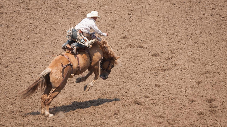 Greeley Stampede Colorado Rodeo