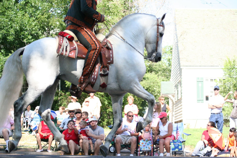 Greeley Stampede Parade White Horse