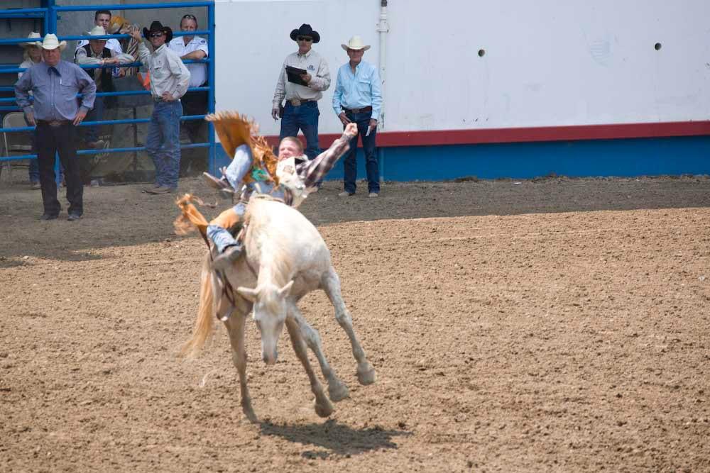 Greeley Stampede Rodeo Cowboy