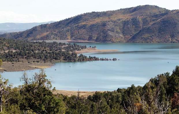 Lake Nighthorse Durango Colorado Trees