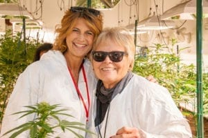 My 420 Tours Toke With Grandma