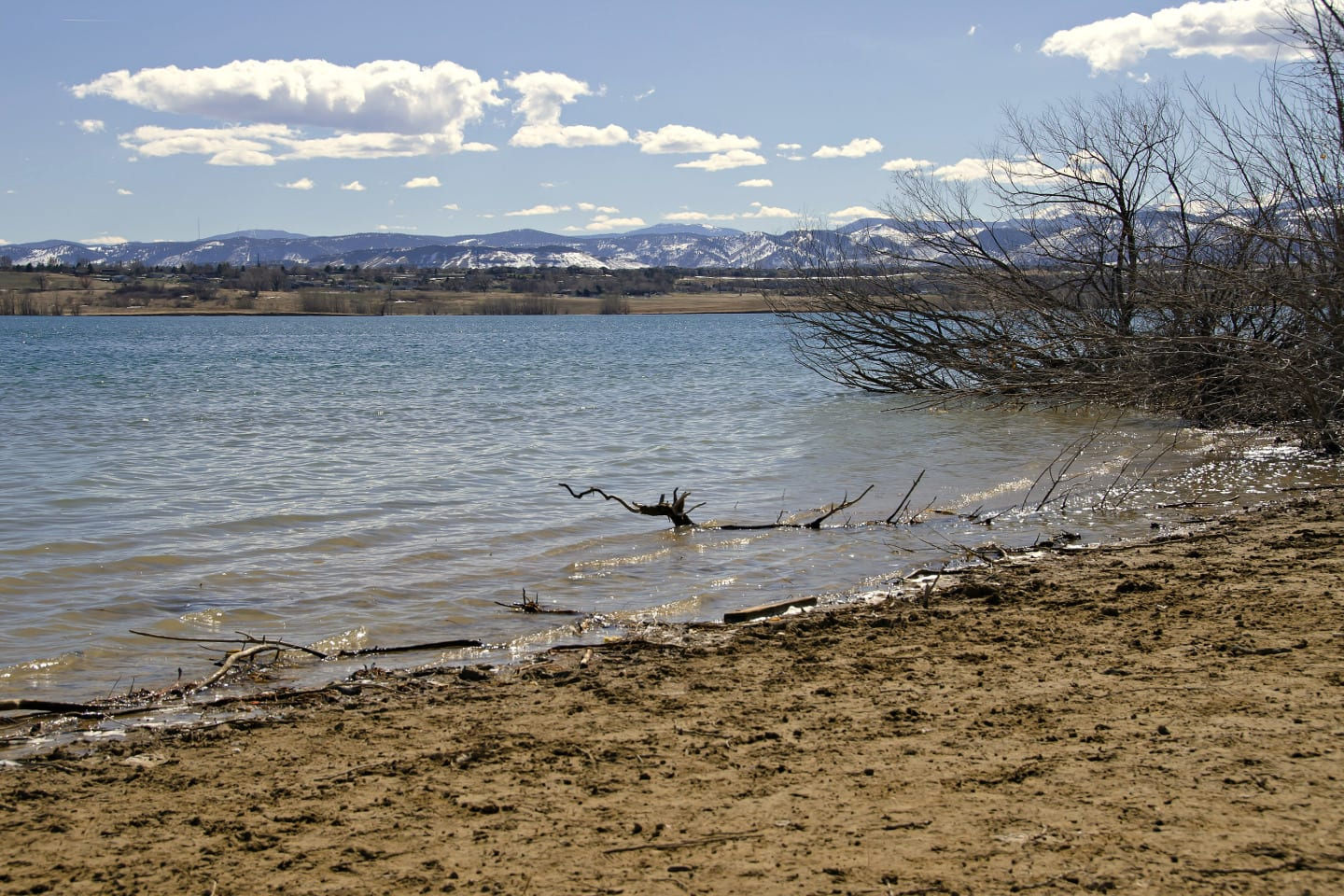 Standley Lake Spring Westminser