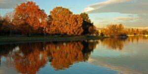 City Park Denver Fall Morning