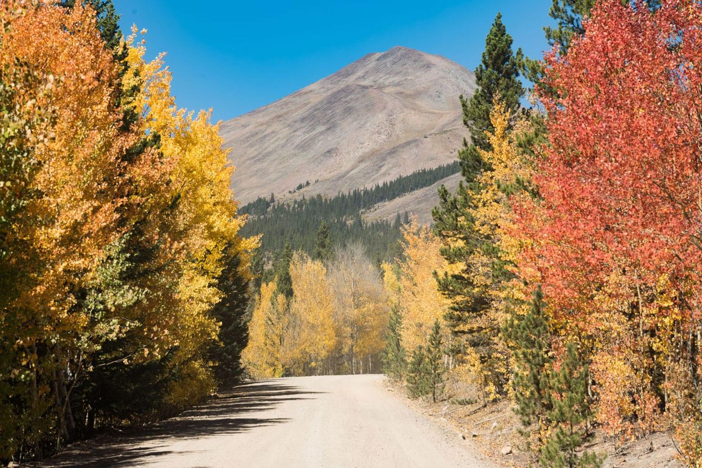 Fall Colors Boreas Pass Autumn Drive