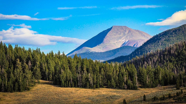 Colorado Mountains Forest Summer