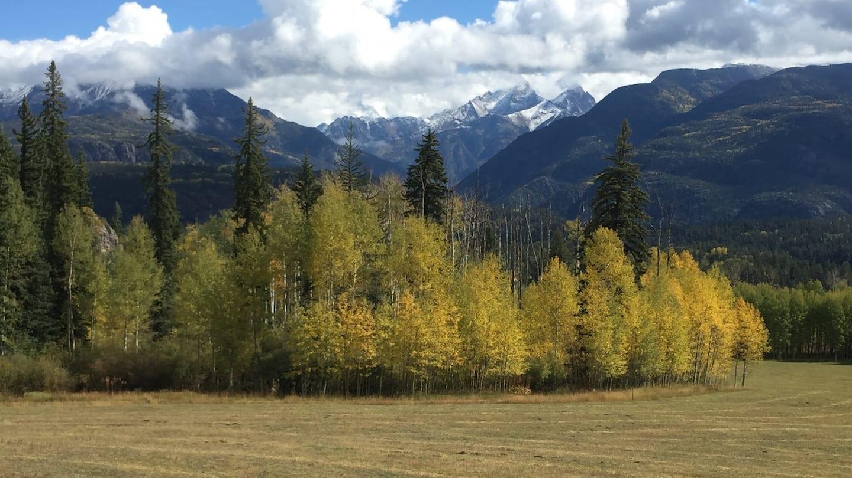 Fall Colors Million Dollar Highway Southwest Colorado