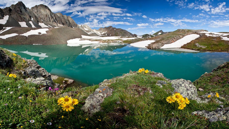 Colorado Scenery Alpine Loop Mountain Lake Flowers
