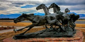 Briargate Mustangs Colorado Springs