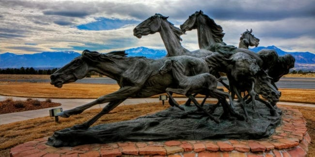 Briargate Mustangs Colorado Springs