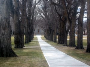 Colorado State University Administrative Building Path