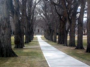 Colorado State University Administrative Building Path