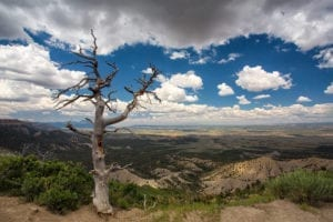 Colorado Trip Planner Summer Mesa Verde National Park