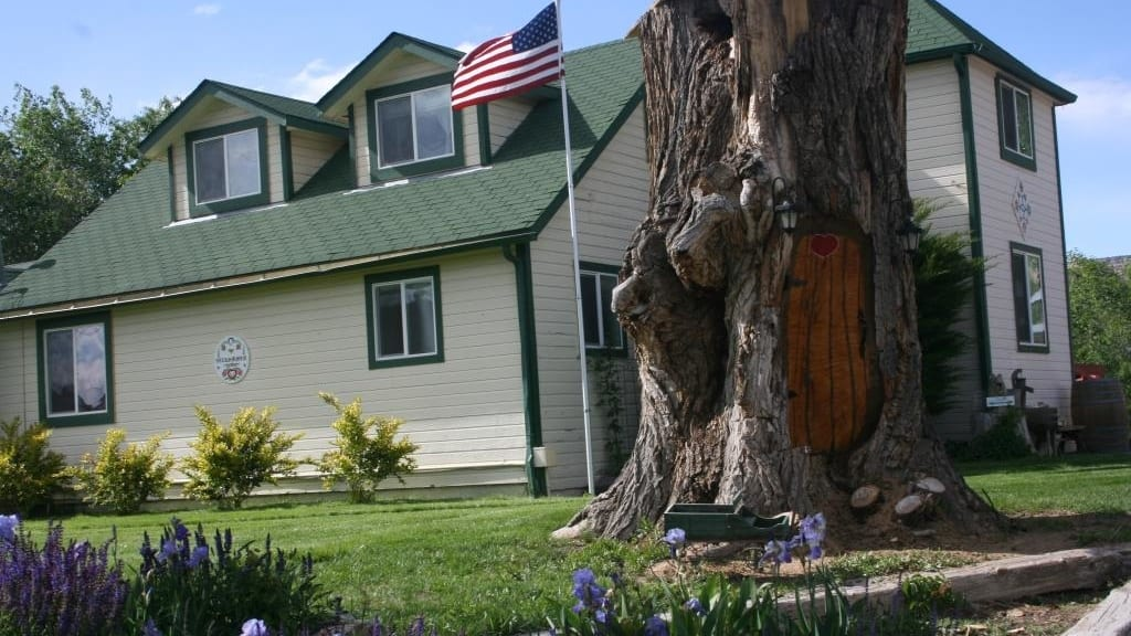 Dreamcatcher Bed and Breakfast Palisade