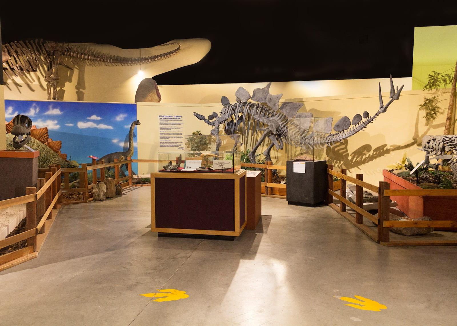 Stegosaurus in Fruita, Colorado