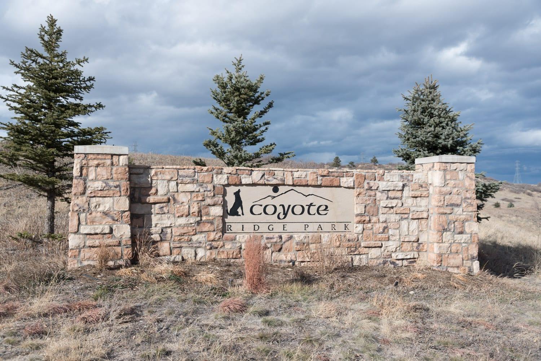 Castle Pines CO Coyote Ridge Park