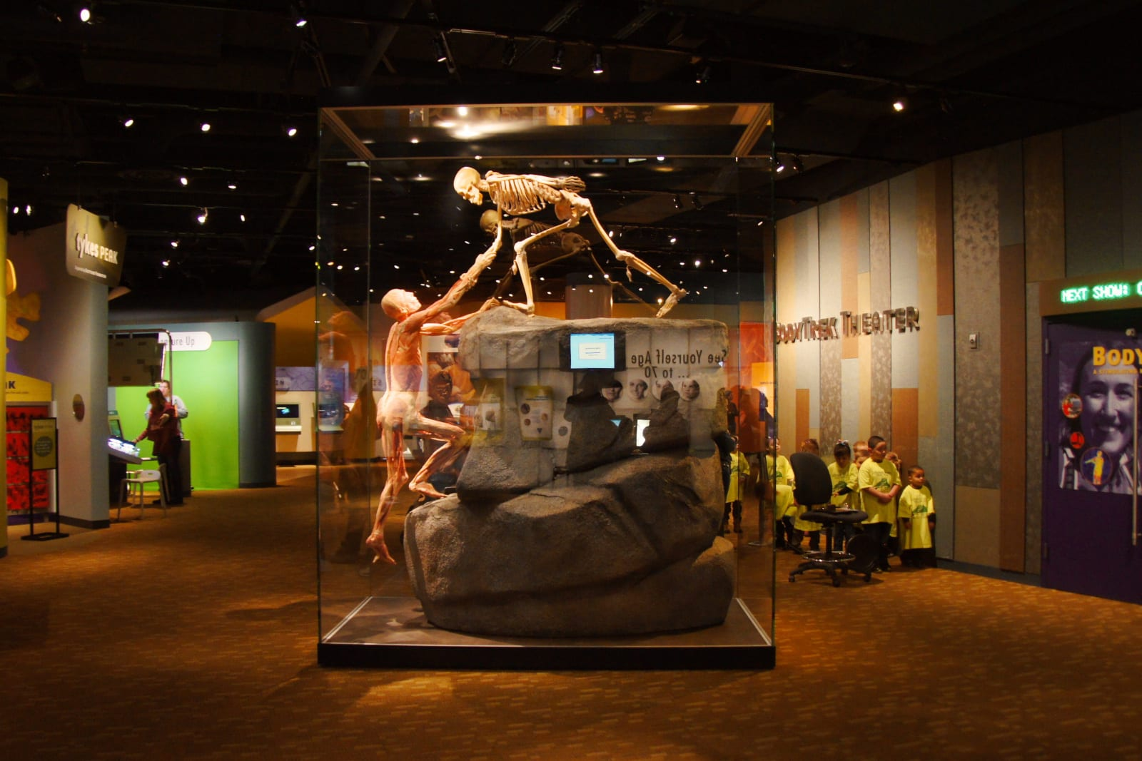 Culture Attraction Denver Museum of Nature and Science Expedition Health