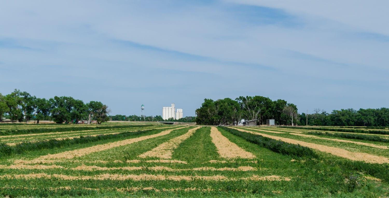 Granada CO Farmland