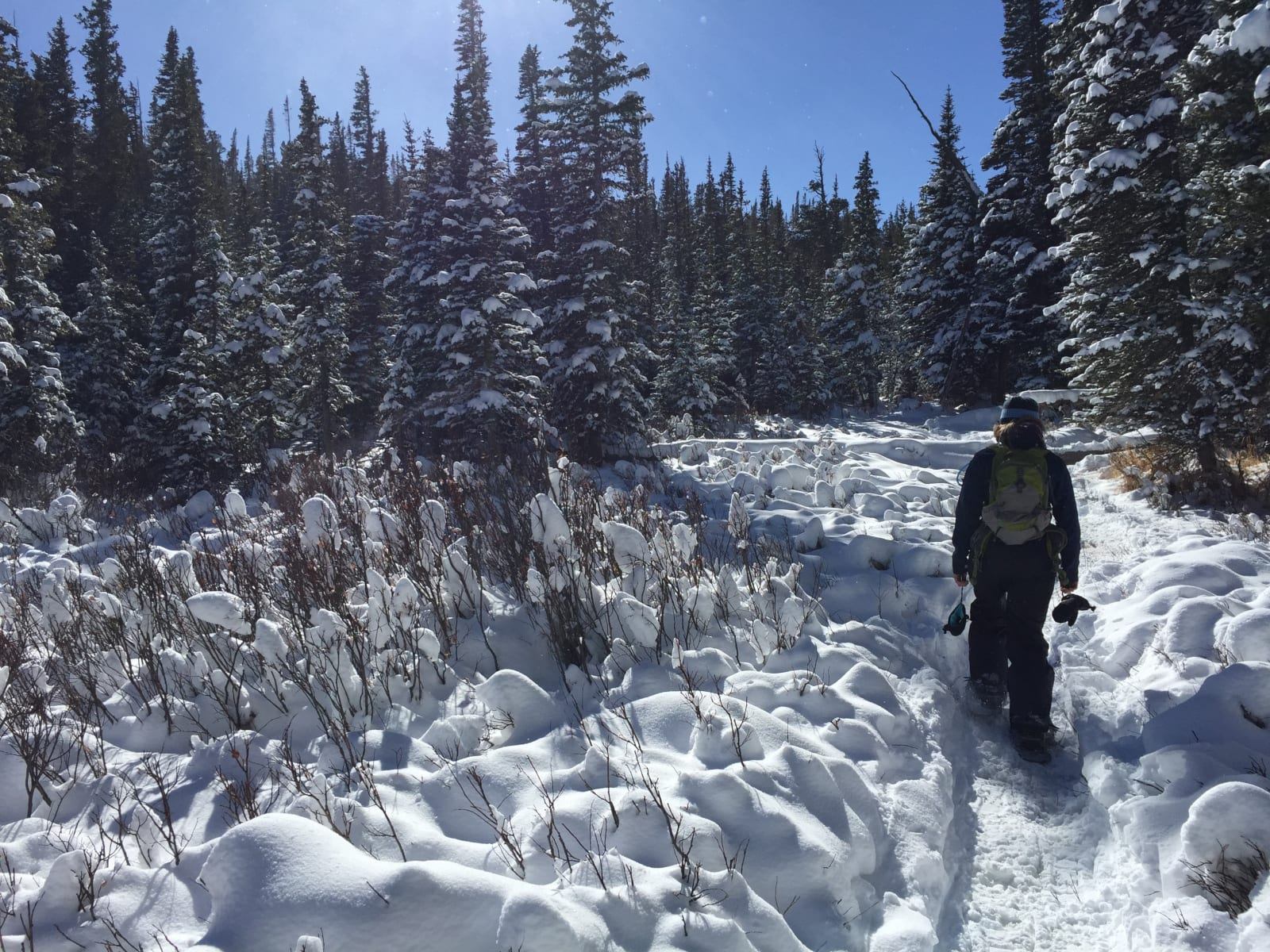 Johnstown CO Winter Snowshoeing