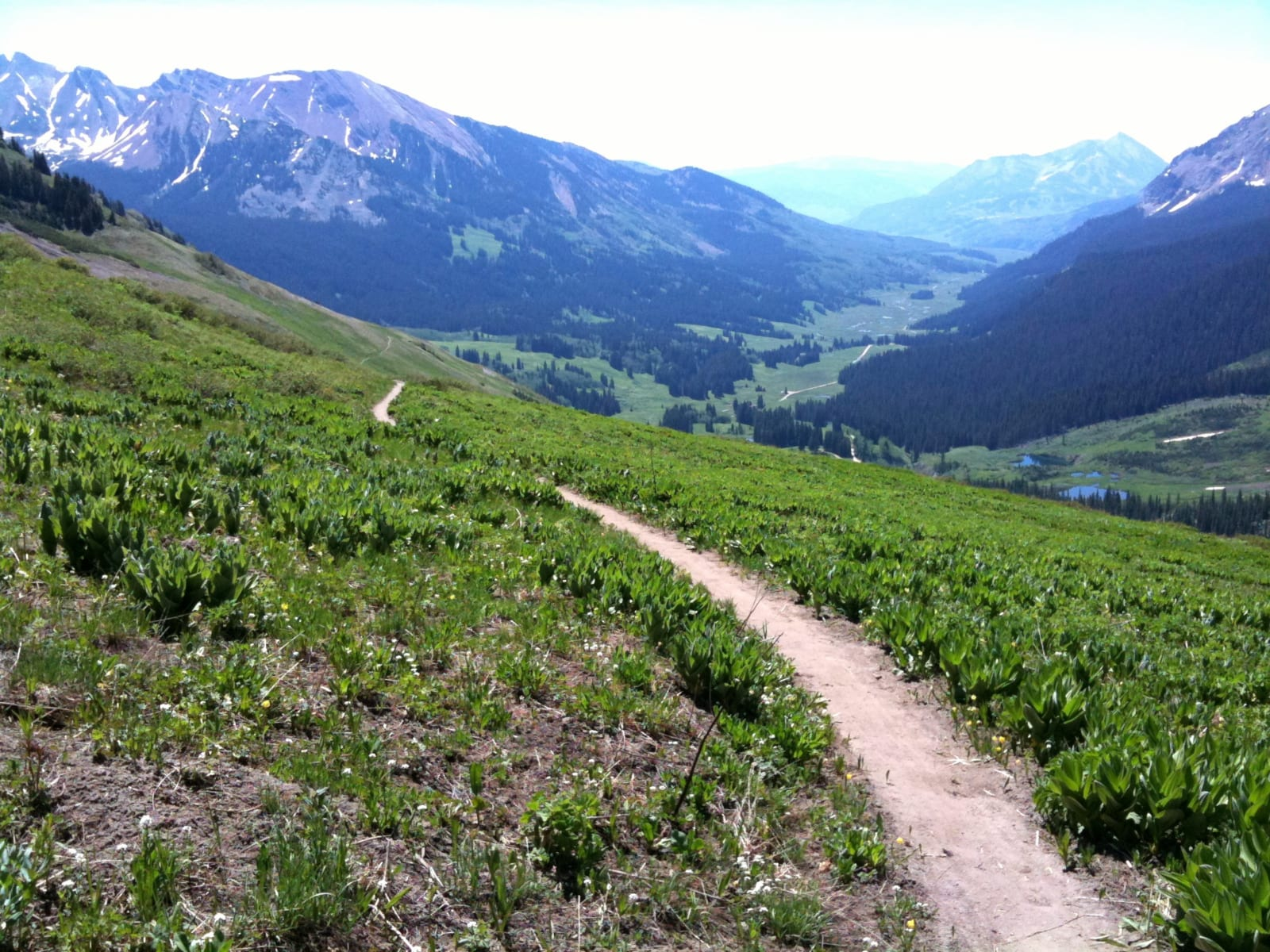 Mountain Biking 401 Singletrack Trail Crested Butte Colorado