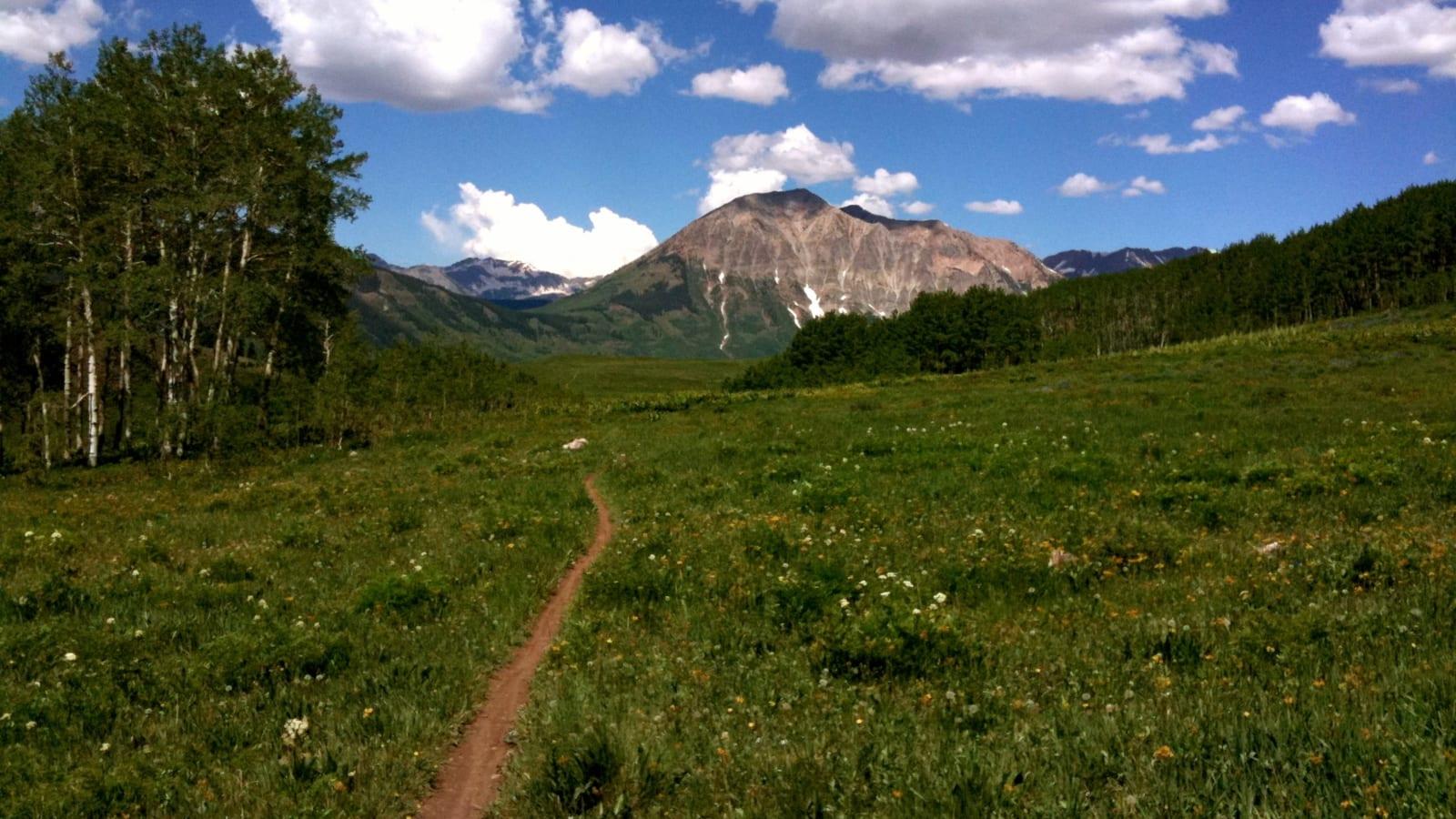 Mountain Biking Singletrack Deer Creek Trail Crested Butte CO