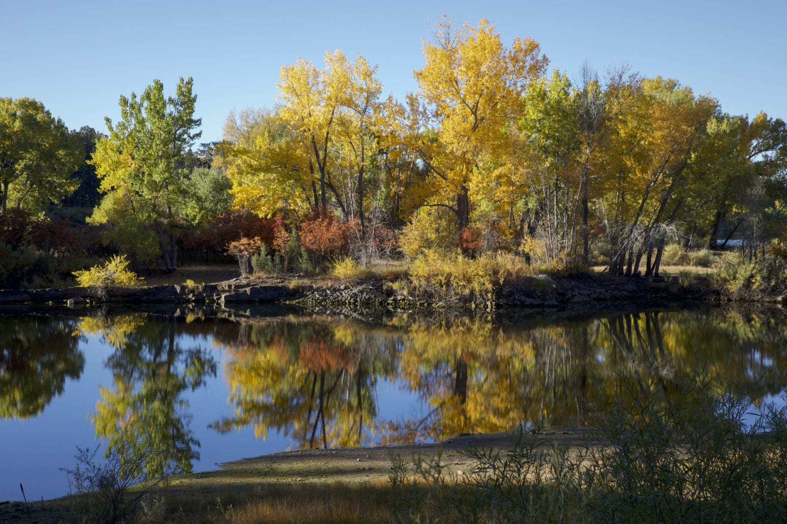 image of reservoir at Mancos State Park