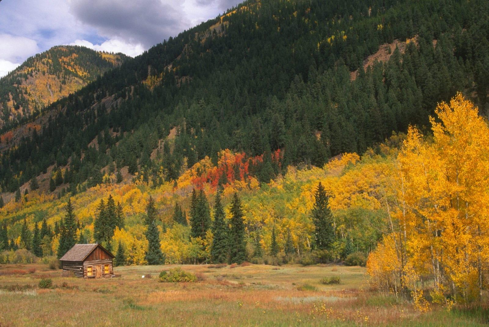 image of fall colors at Sylvan Lake State Park