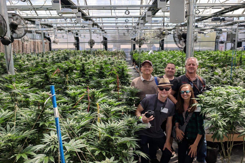My 420 Tours Denver Cannabis Tour