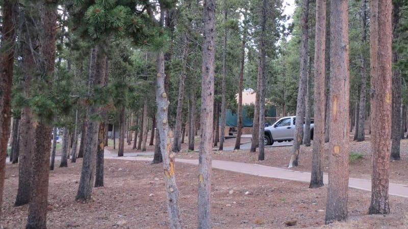 Golden Gate Canyon State Park Campground Yurt