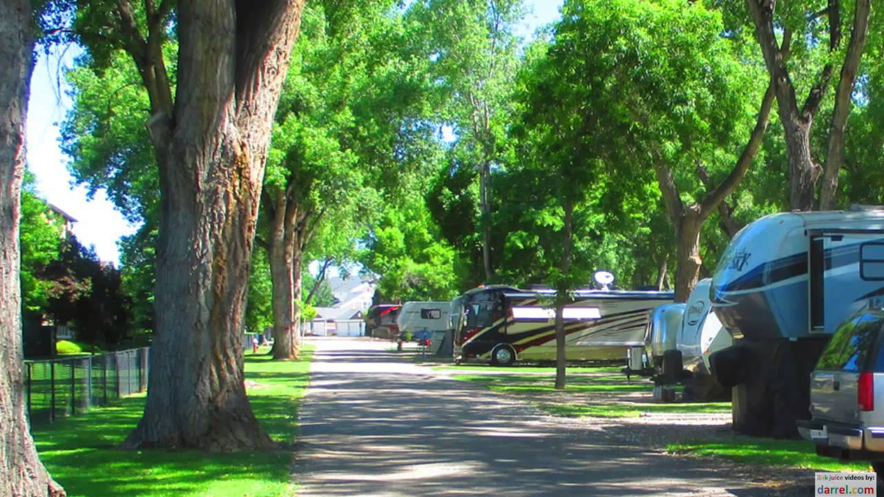 Loveland RV Resort Campground CO Trees Road