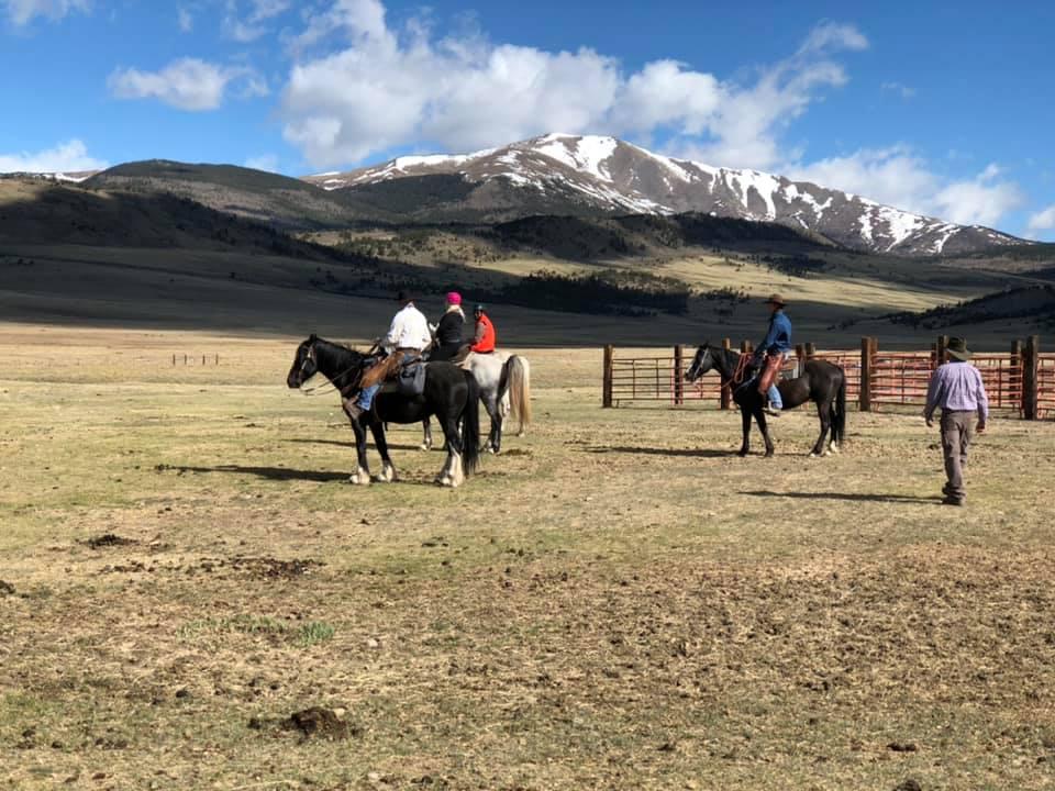 American Safari Ranch, Colorado