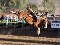 Cattlemen's Days Rodeo Gunnison