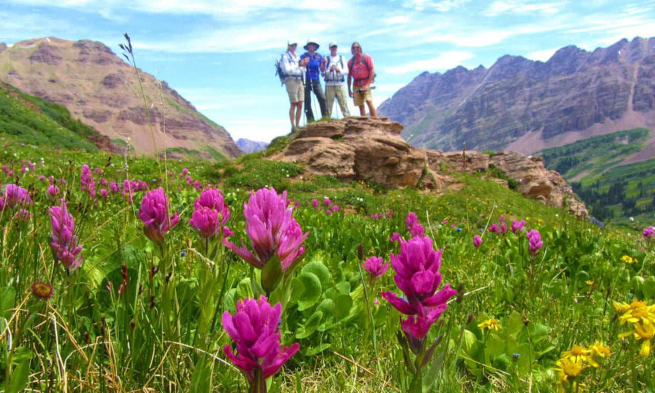 Crested Butte Wildflower Festival Hikes