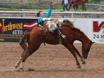 Meeker Range Call Rodeo