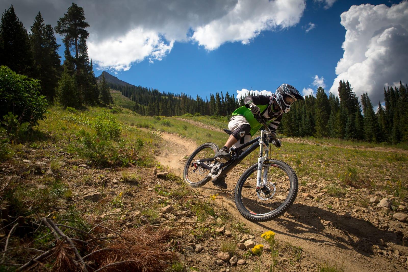 Mountain Bike Service