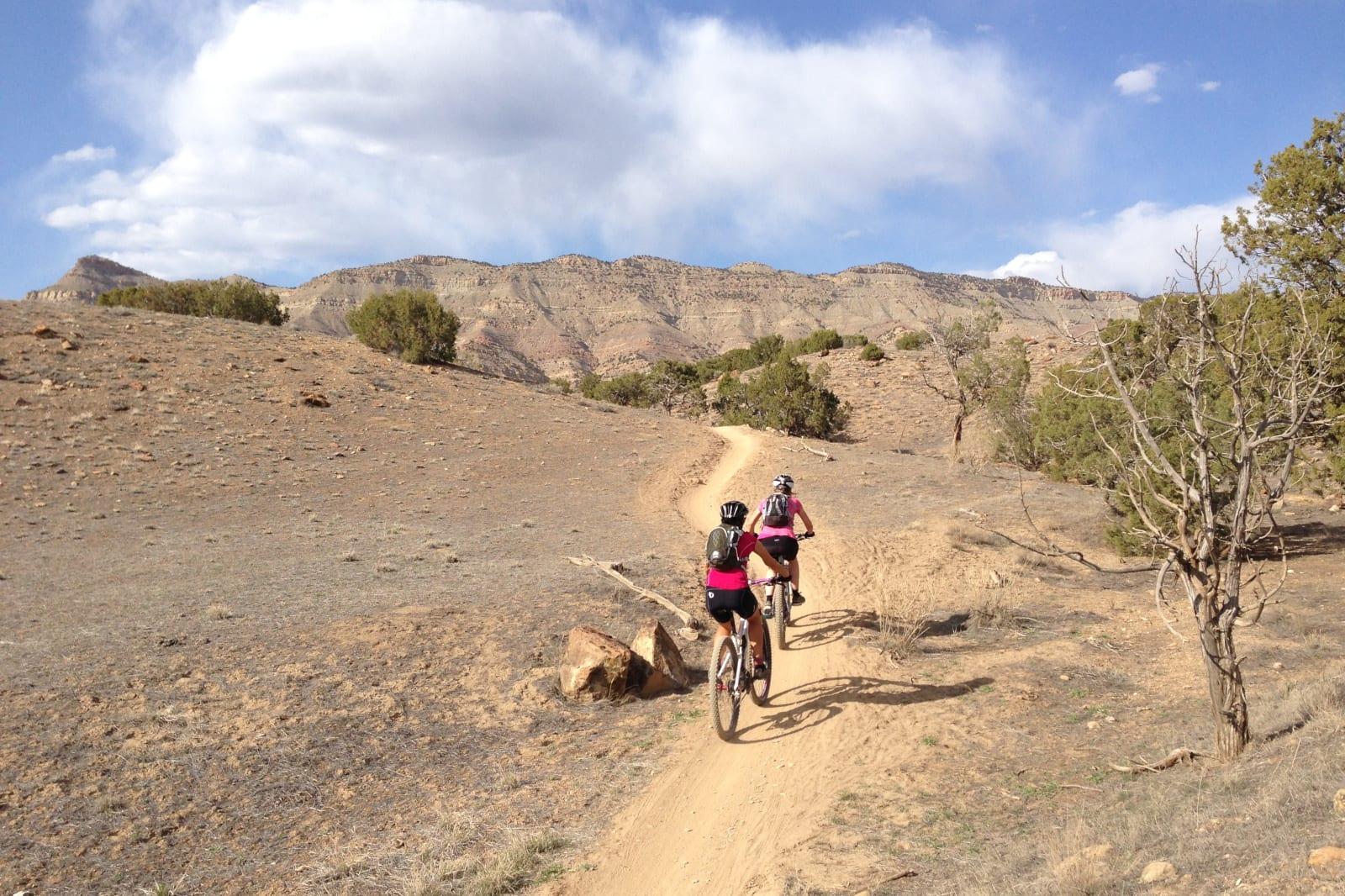 Mountain Bike Service North Fruita Desert Trails