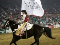 National Western Stock Show Rodeo Denver